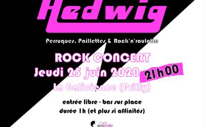 HEDWIG – LIVE